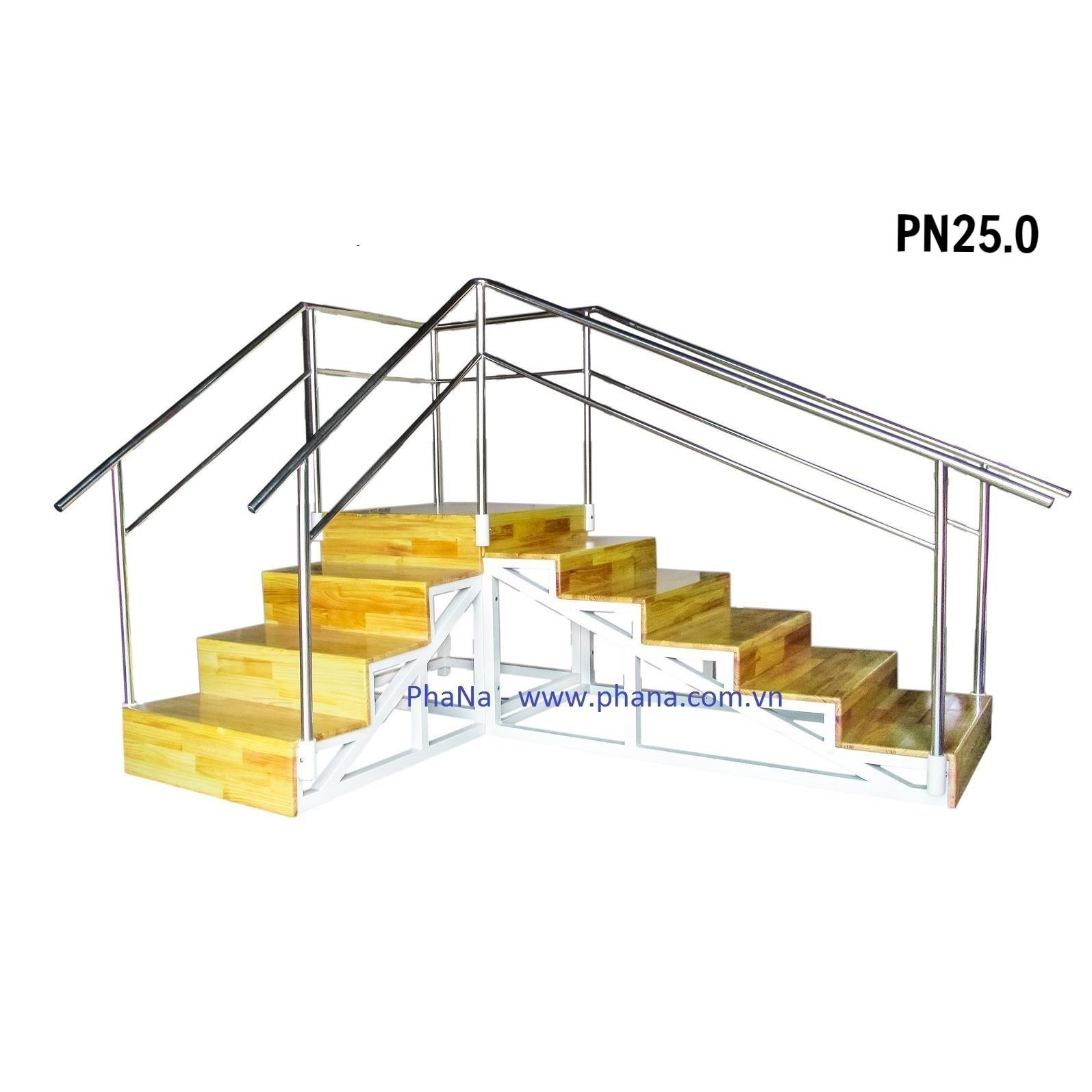 PN25.0 - Cầu thang tập đi
