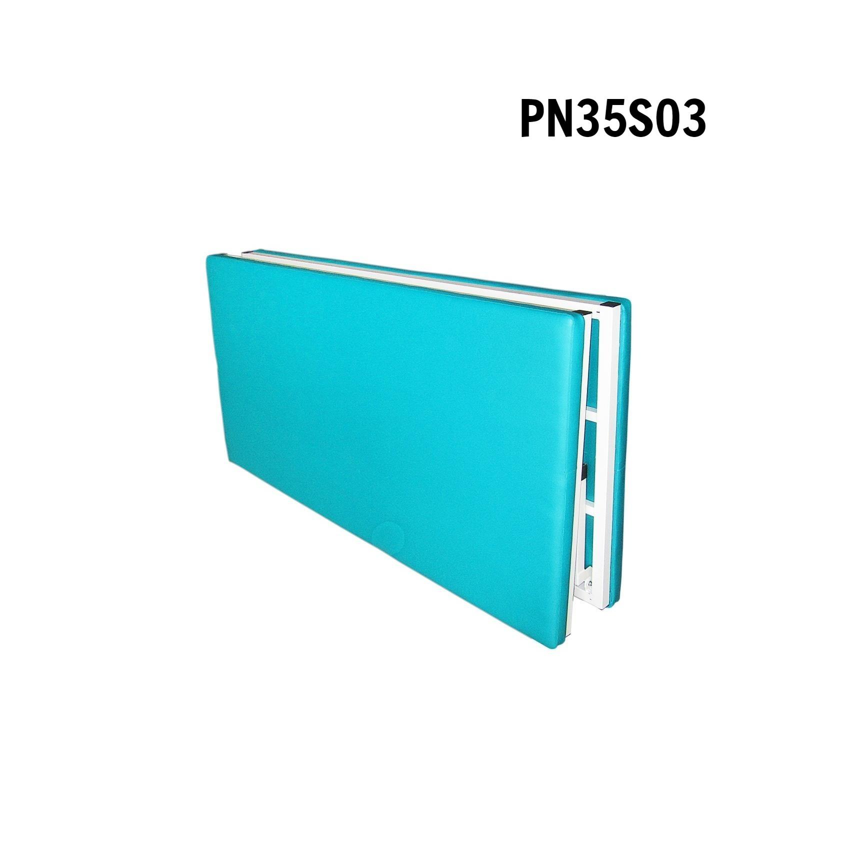 PN35S03 - Giường tập PHCN - Bobath (sắt)