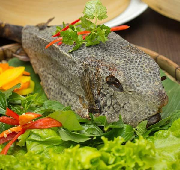 Những cách chế biến đặc sản Cá Bò Hòm