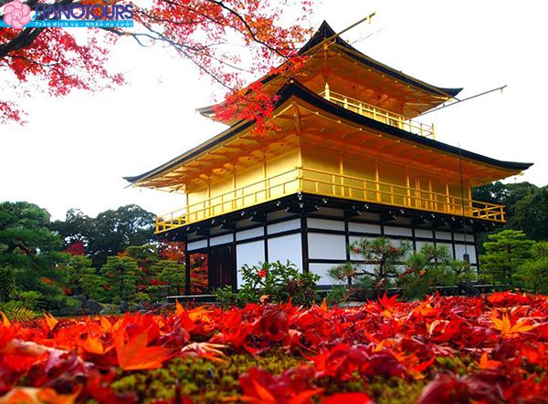 chùa Kim Các Tự - Kinkakuji