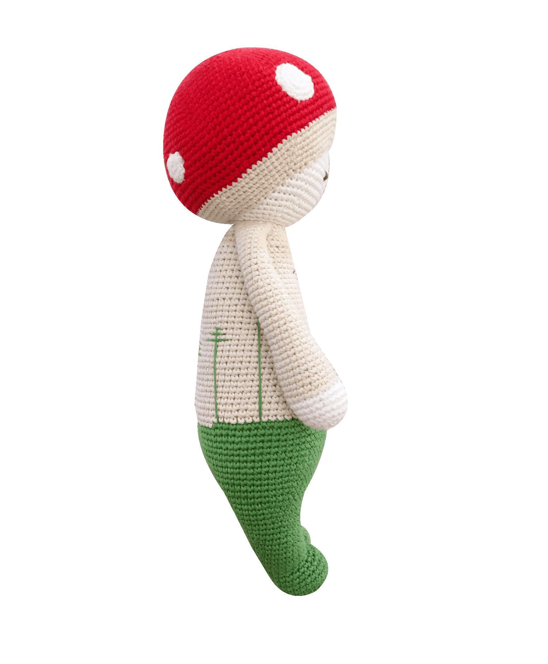 Mario Boy Mushroom