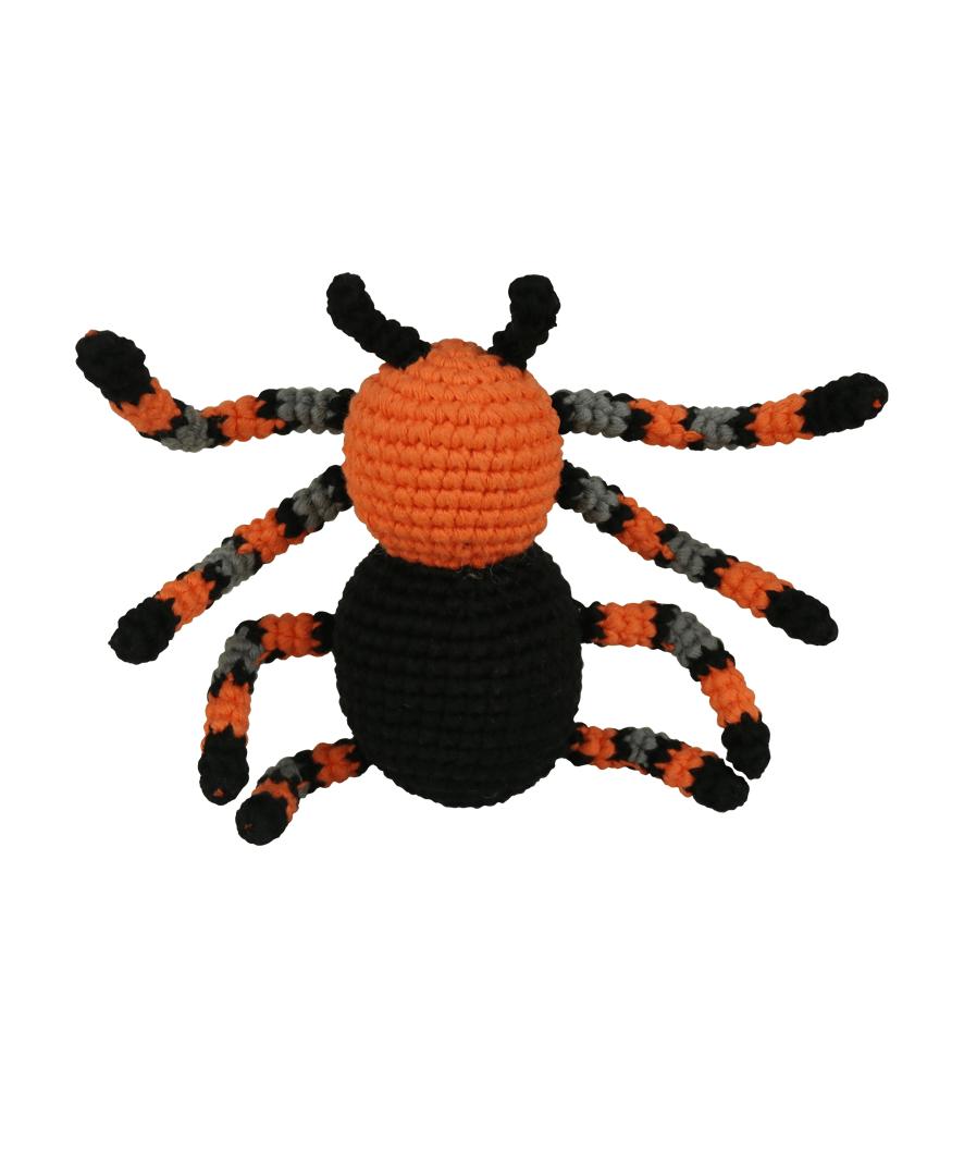 Spider Pica