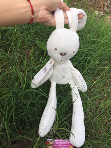Thỏ trắng mamamiya papaps