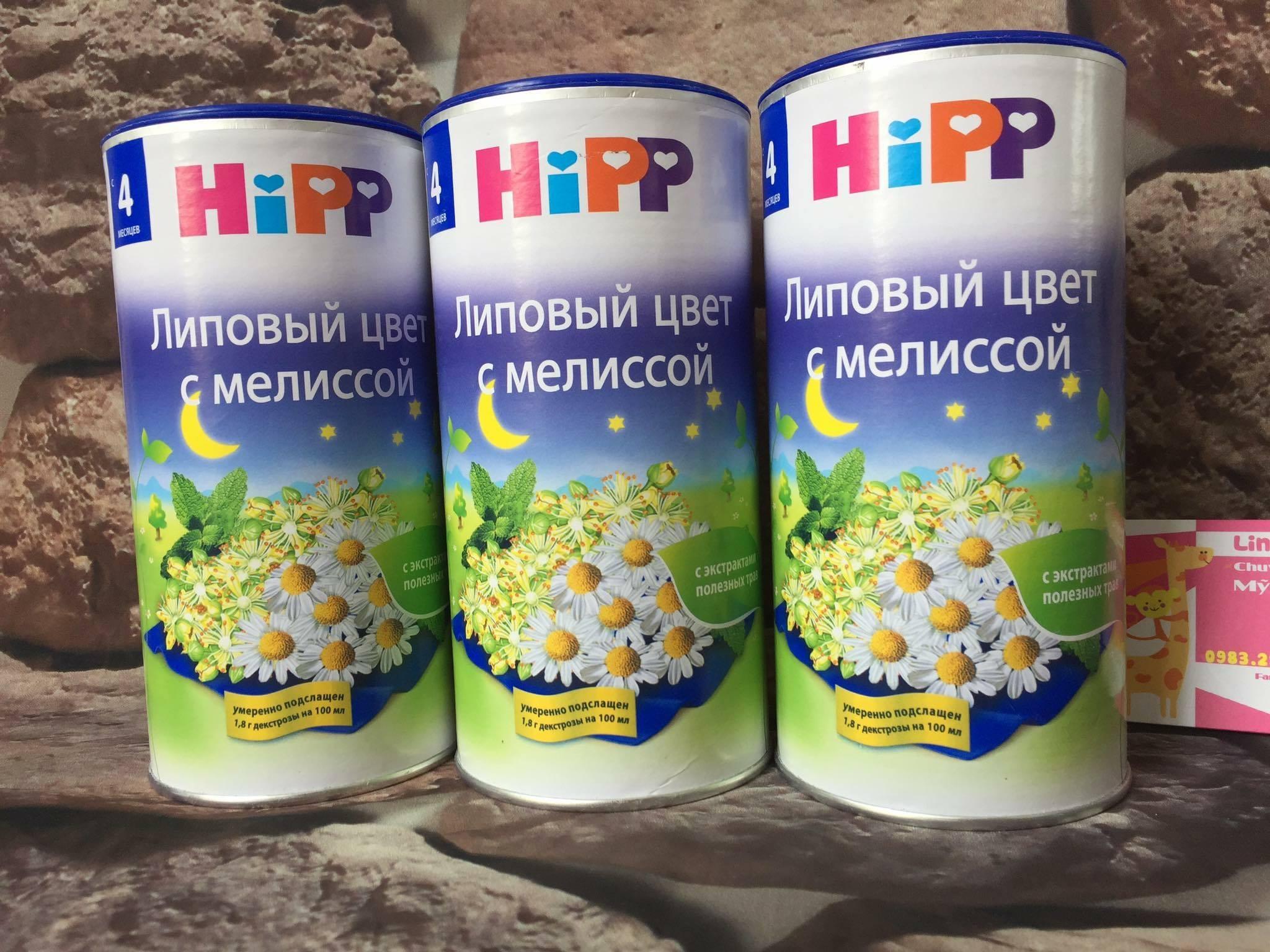 Trà Hipp hoa cúc ban đêm