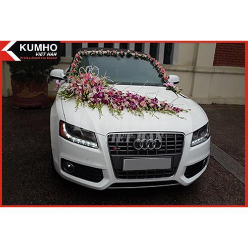 Audi S5 Mui Trần Sang Trọng cao Cấp ( Nội Thành )