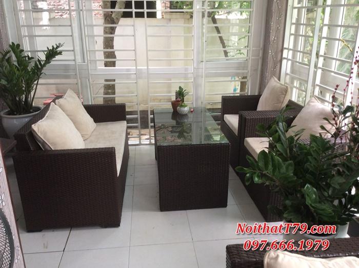Sofa phòng khách, Sofa văn phòng 1716