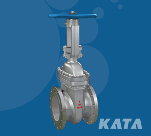 kata - API602 forged steel valve