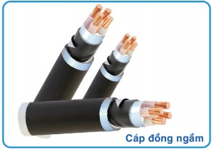 cap-dong-ngam