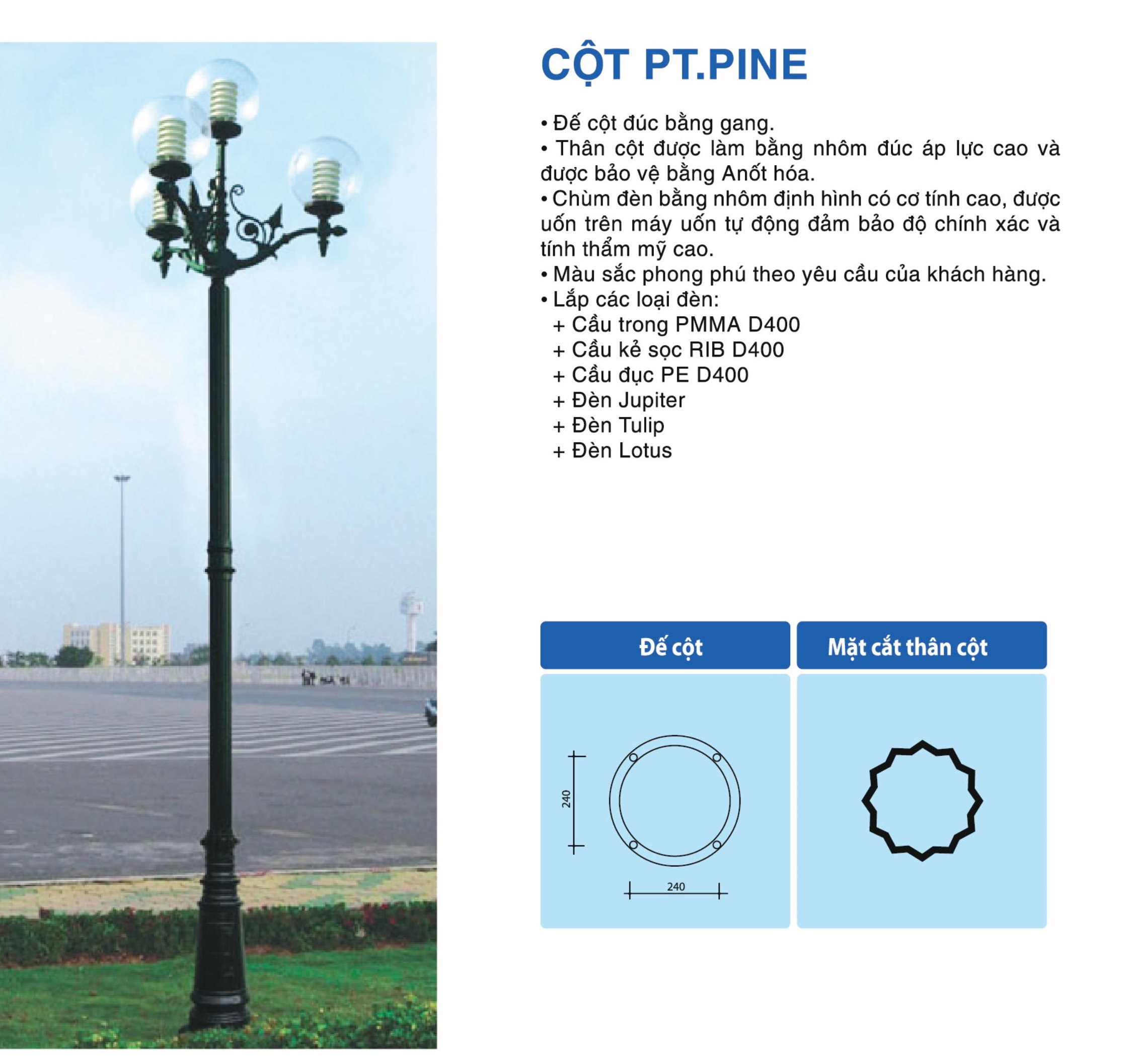 cot-pt-pine