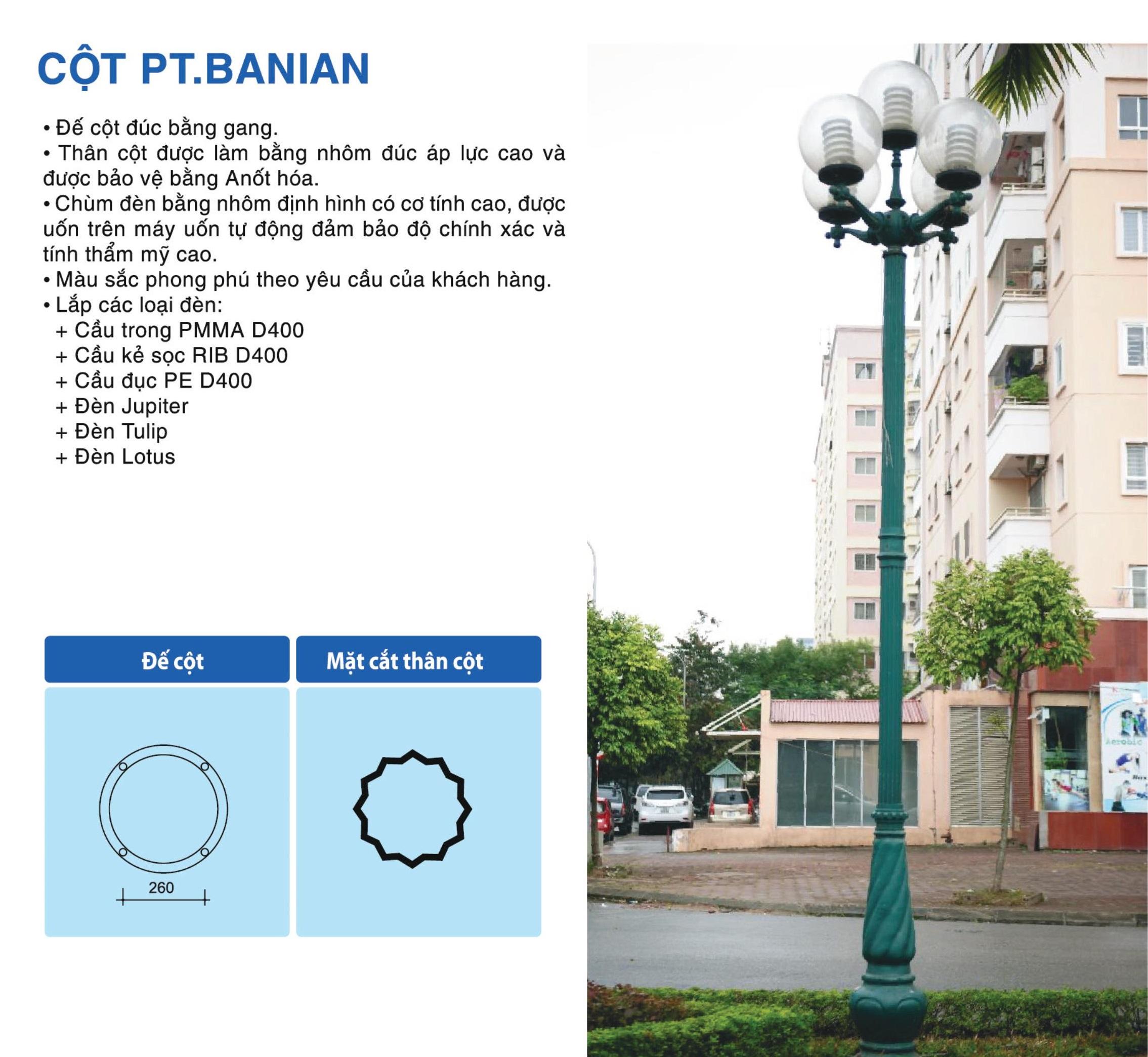 cot-pt-banian