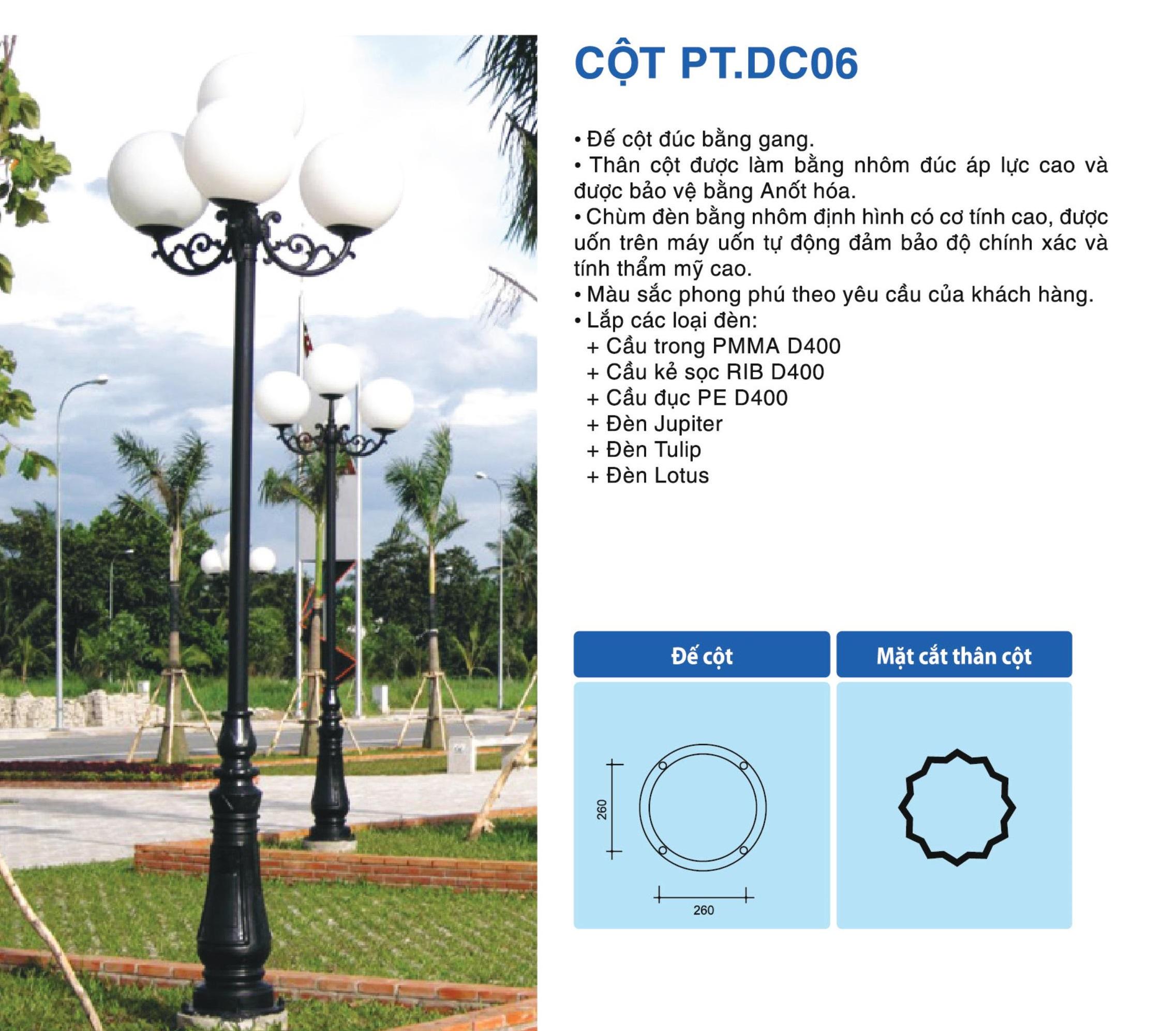 cot-pt-dc06