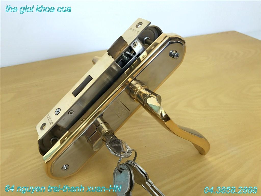 ảnh khóa inox mạ vàng ZL gold 66