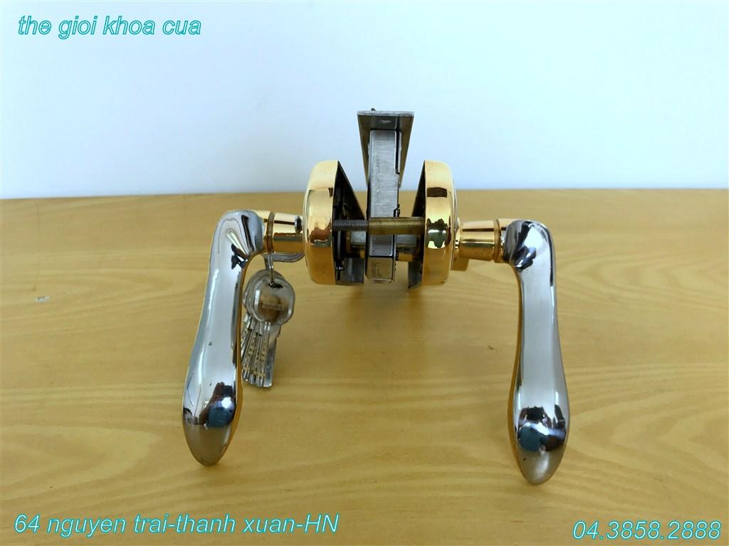 ảnh mẫu khóa inox mạ vàng ZL gold 66