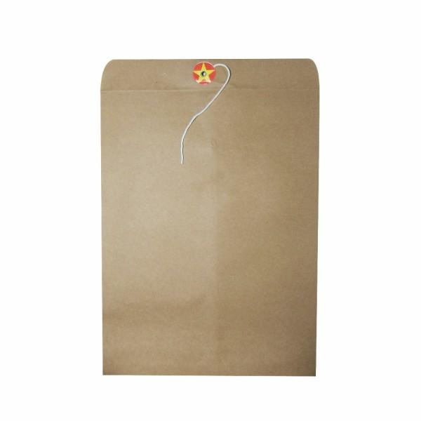 Túi hồ sơ a4 vàng có dây (VN)