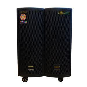 Loa vali kéo di động cao cấp Temeisheng GD15-06