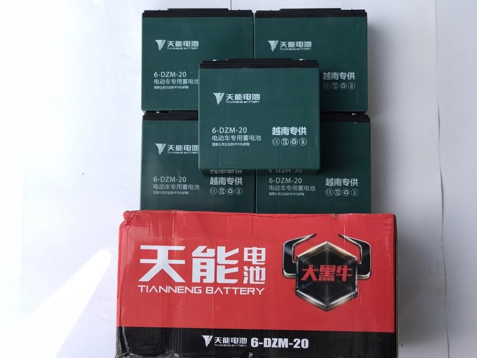 Ắc quy xe máy điện Tianneng 60V-20Ah