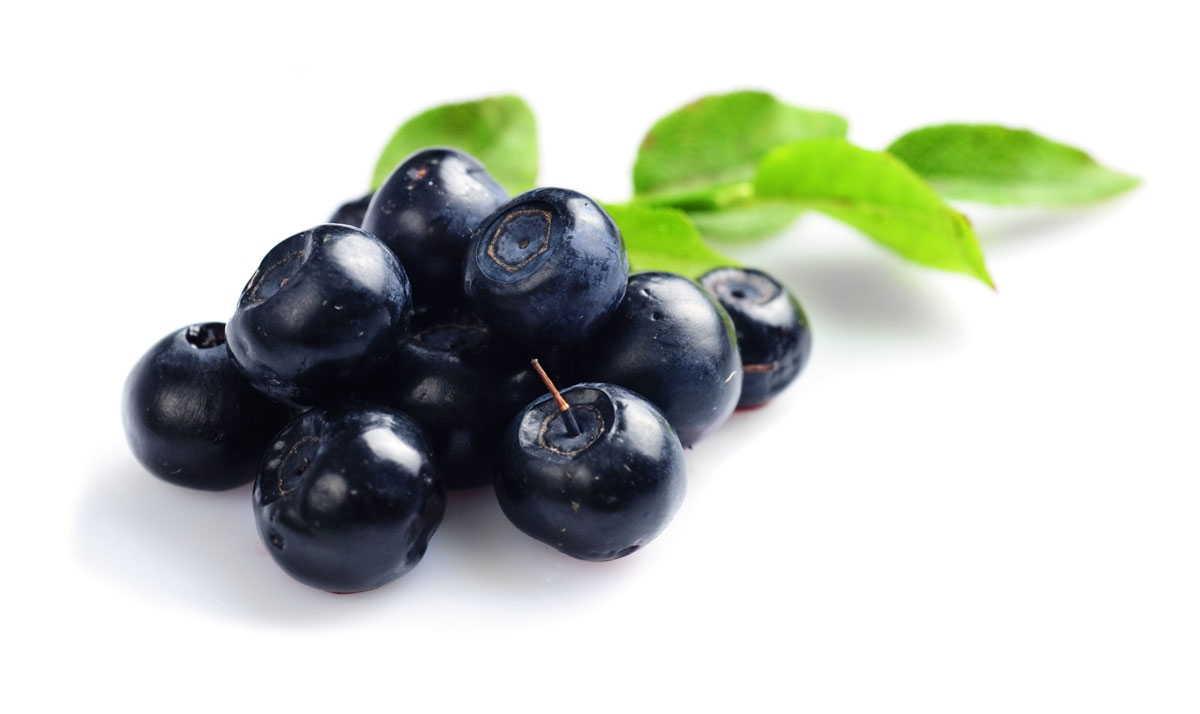 fa-bilberry-2-7c4d280c-028a-425d-8364-84148cc570eb.jpg?v=1483005302130