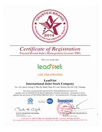 LeadViet Group