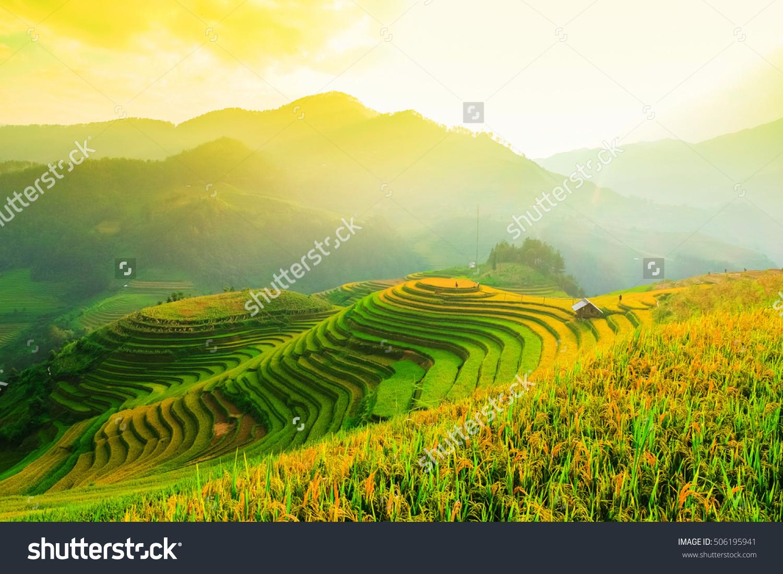 Tranh-dan-tuong-ruong-bac-thang-sapa-1
