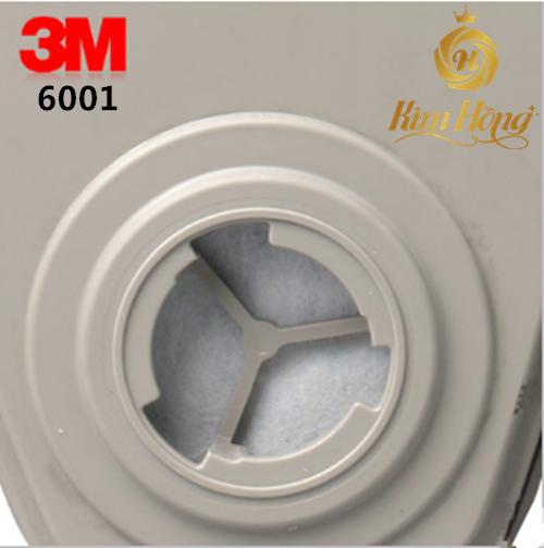 PHIN LỌC 3M 6001
