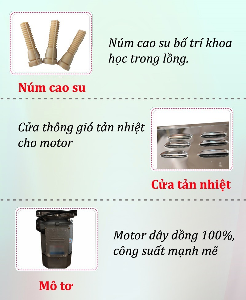 thong so ki thuat may vat long ga vit Viet Nam