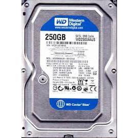 Ổ cứng máy bàn WD250 GB