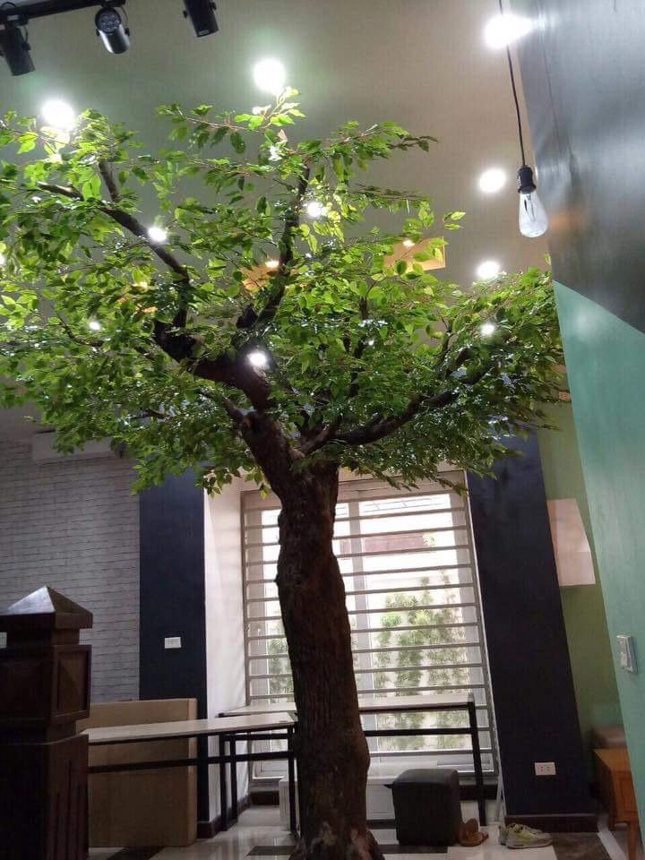 Giá bán cây giả tại Hà Nội tốt nhất tại Phương Thảo