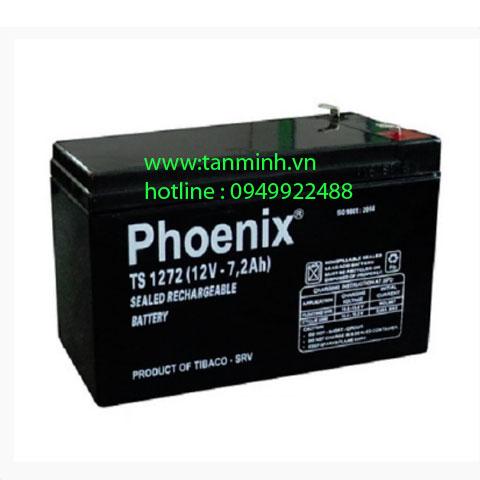 Ắc quy Phoenix TS1272 (12V-7.2AH)
