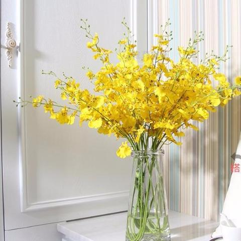 Kết quả hình ảnh cho cắm hoa lan vũ nữ