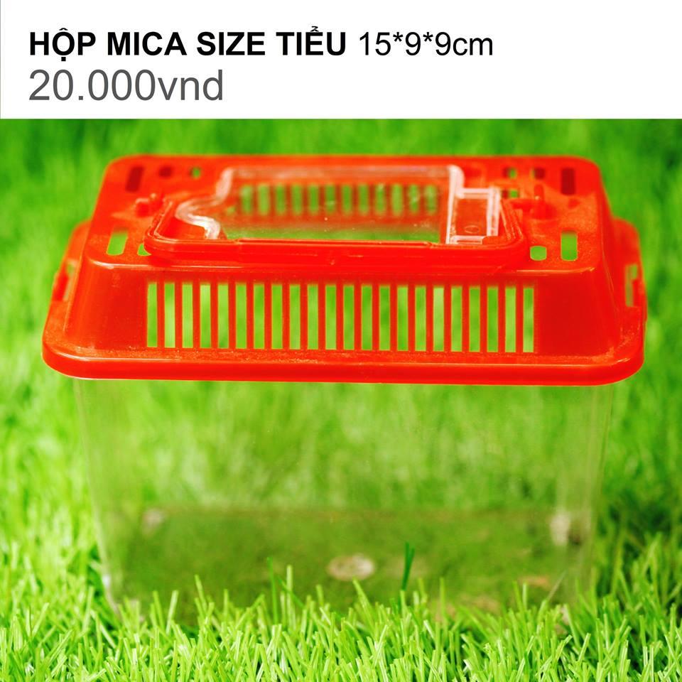 HỘP MICA SIZE TIỂU 15*9*9CM