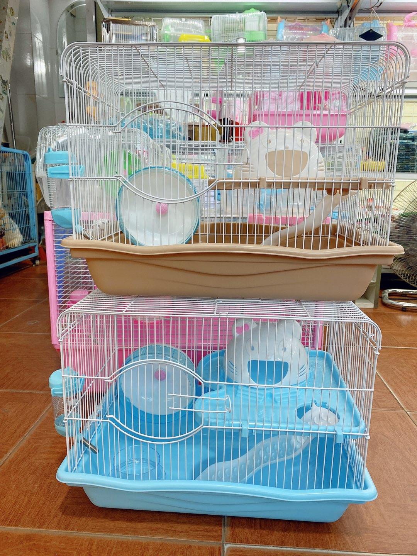 Lồng mèo cho hamster size đại