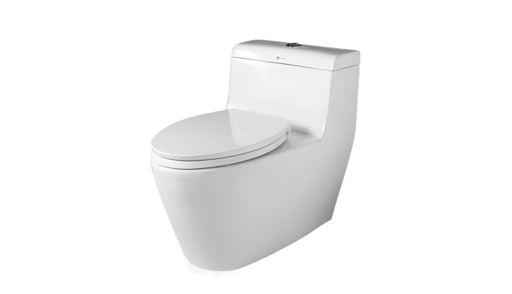 BC 809 - One Piece Toilet