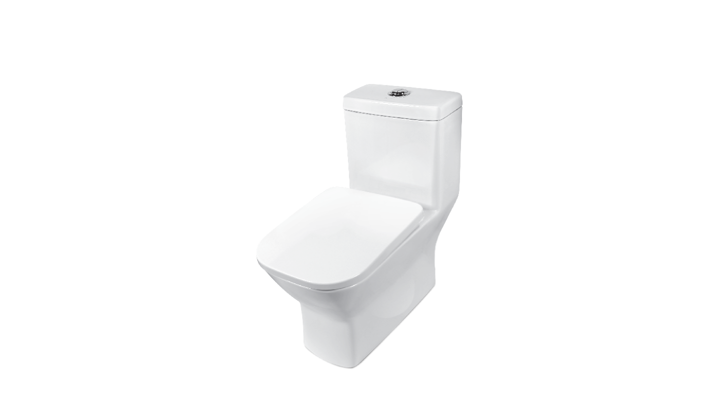 BC 663 - One Piece Toilet