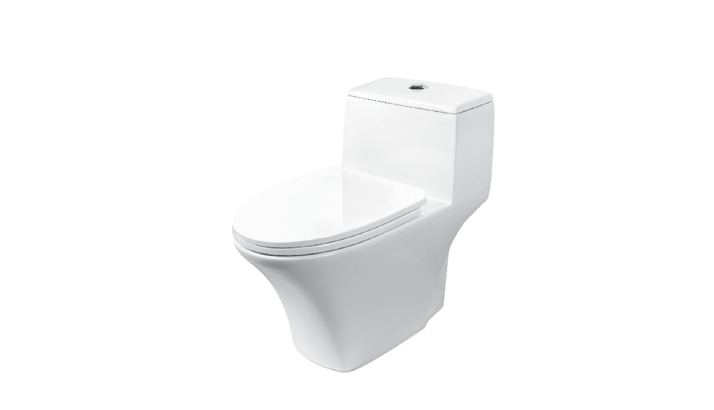 BC 880 - One Piece Toilet