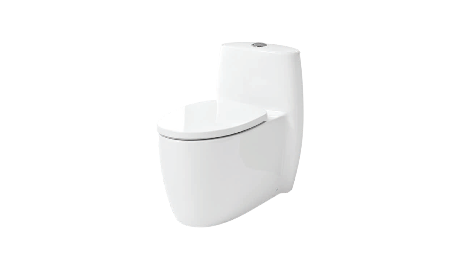 BC 889 - One Piece Toilet