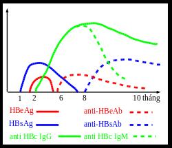 Diến tiến các marker của virus viêm gan B