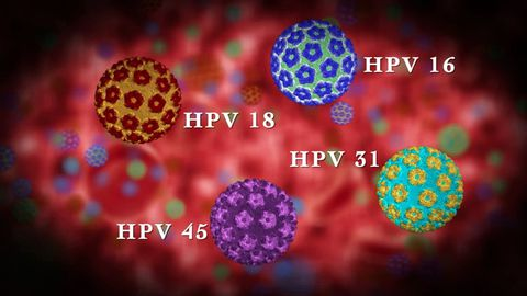 HPV và bệnh ung thư cổ tử cung