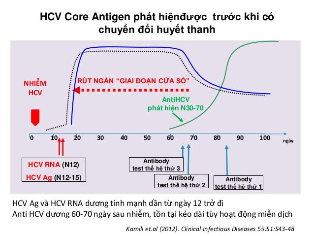 Giá trị HCVAg trong theo dõi và điều trị viêm gan C