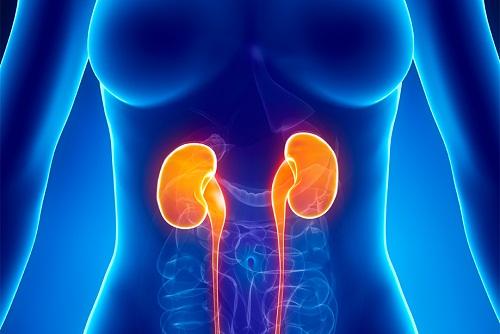 Điều trị viêm gan C cho bệnh nhân suy thận