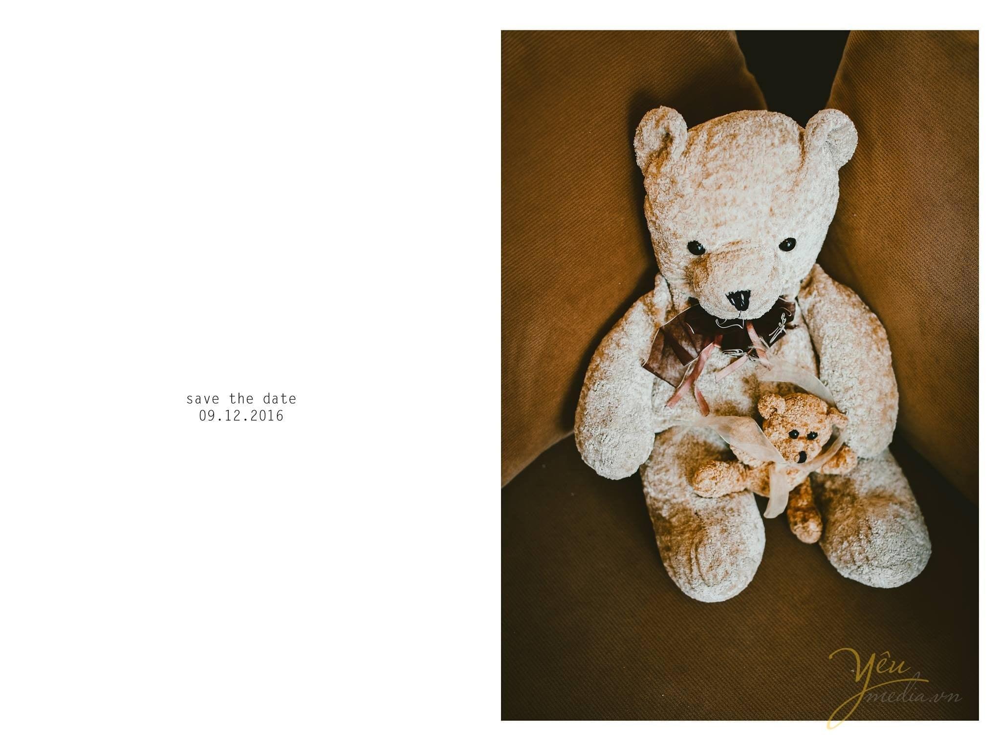 gấu teddy hành trang cùng cô dâu về nhà chồng