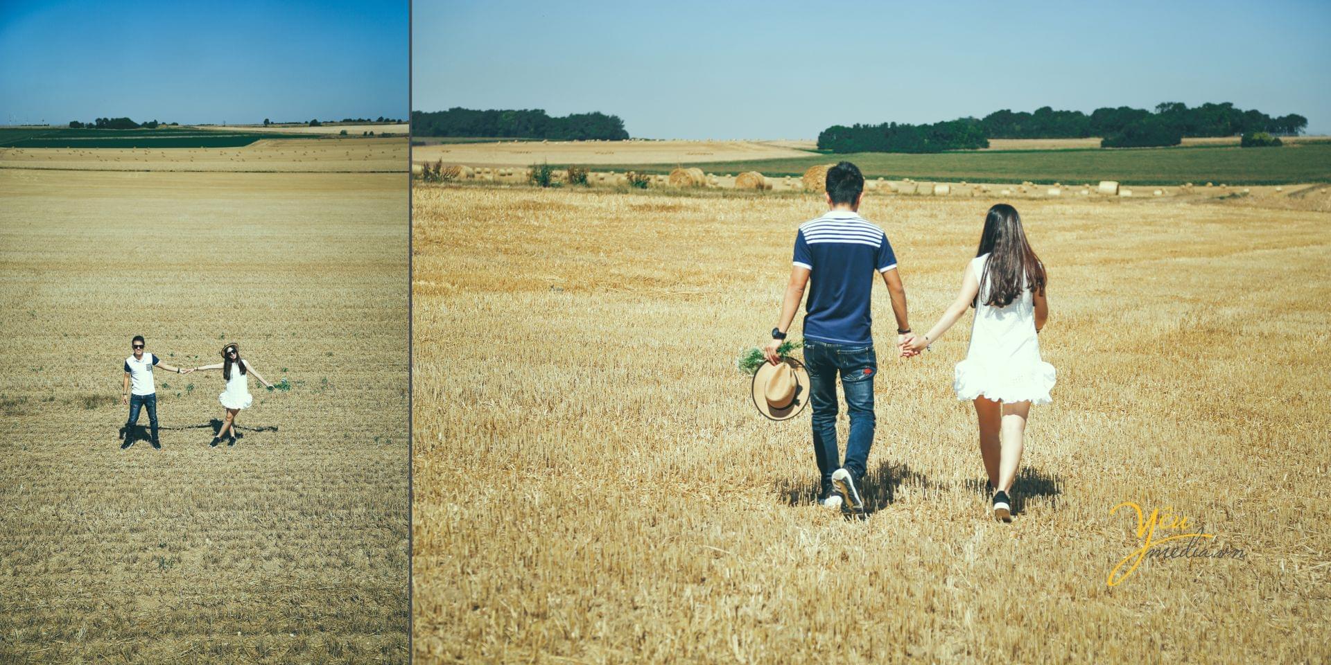ảnh chụp cưới pre wedding tại dồng cỏ châu âu