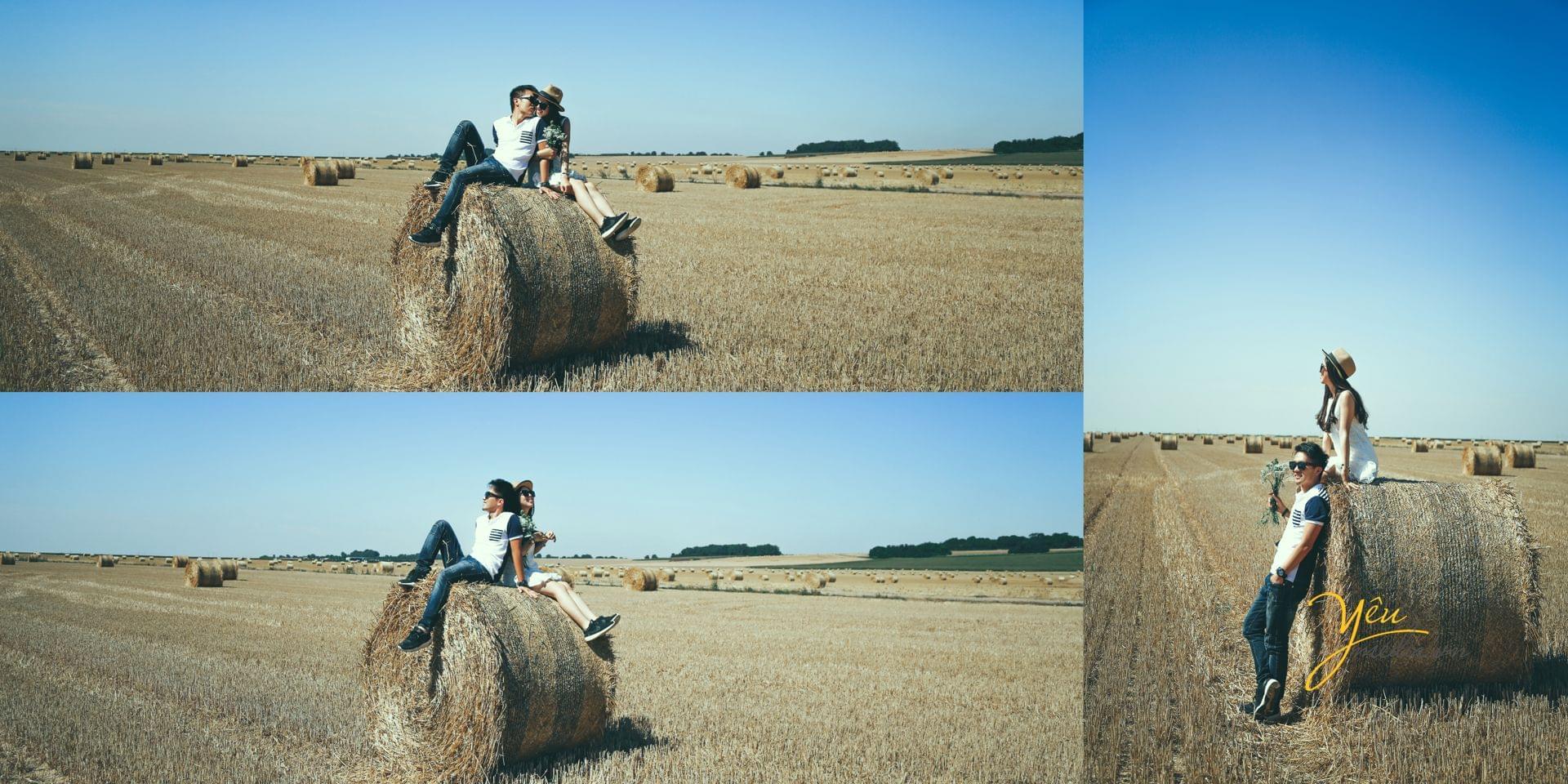 ảnh cưới ngoại cảnh chụp thảm cỏ châu âu