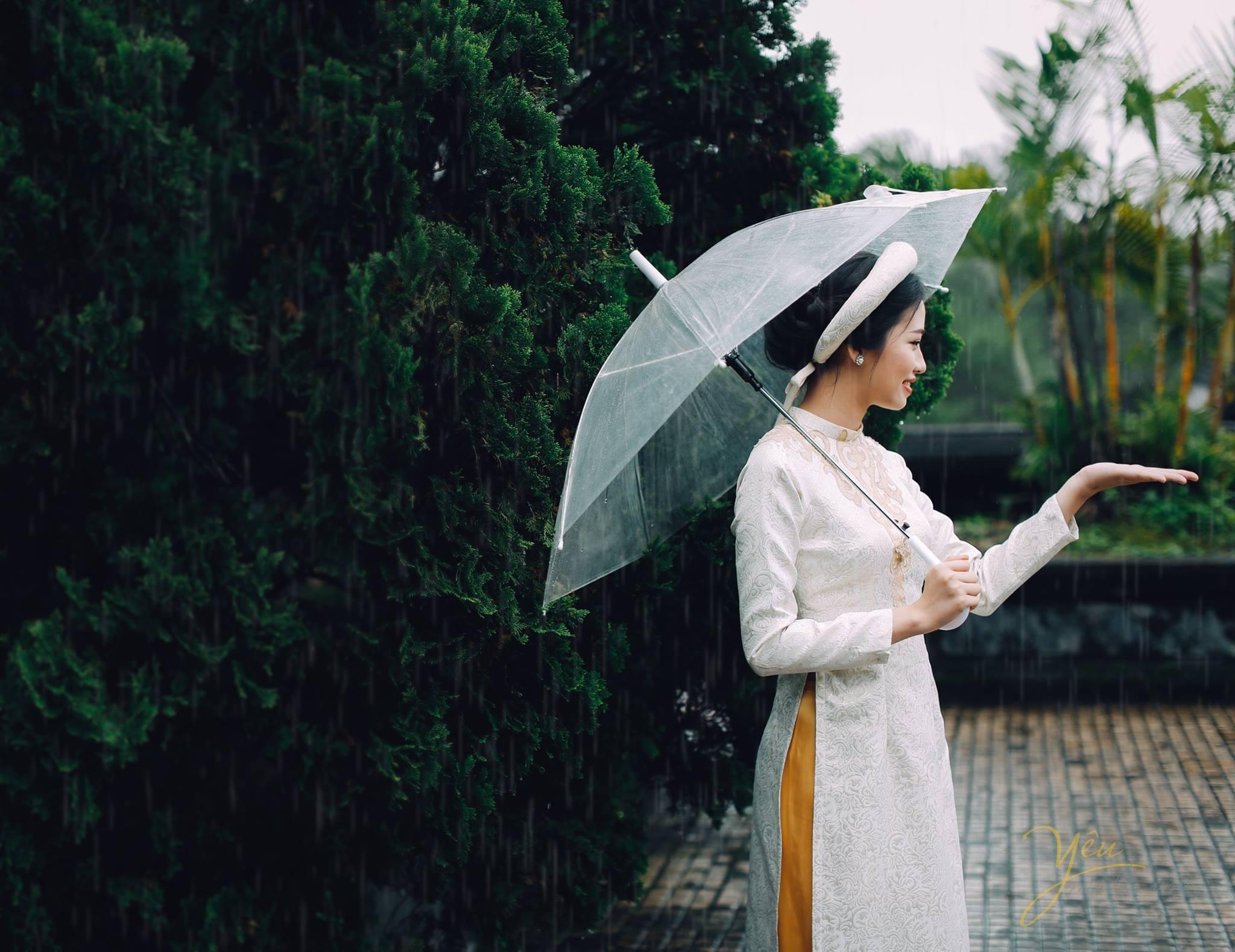 chụp cô dâu dưới mưa ô trong suốt