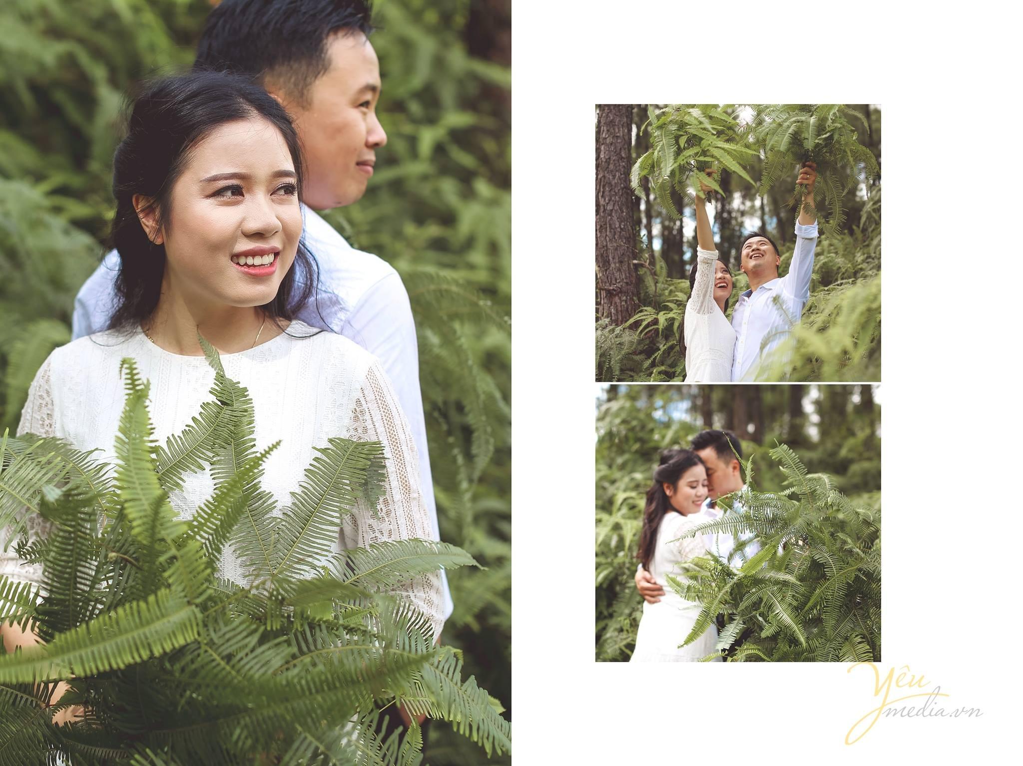 ảnh chụp cô dâu chú rể áp lưng chụp tại rừng thông