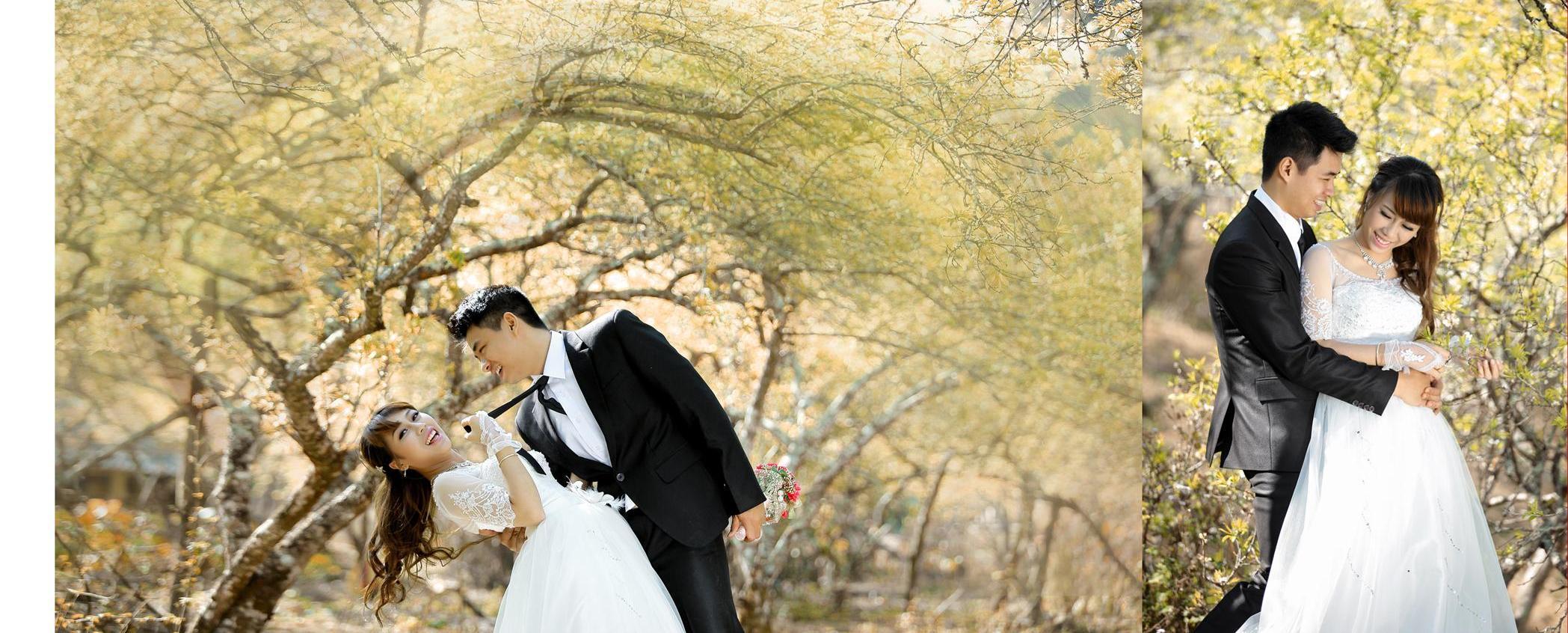 chọn phông nền chụp ảnh cưới tại studio