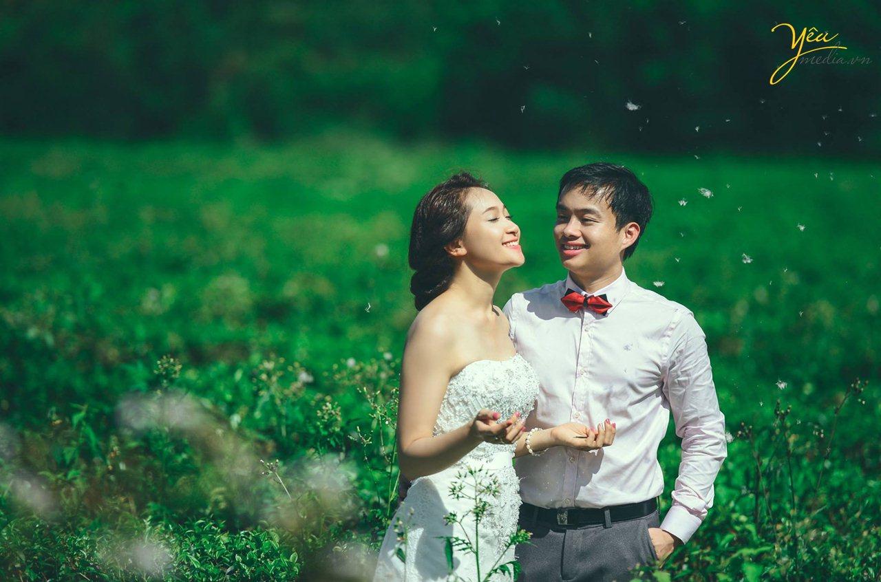 chụp ảnh cưới ở đồi xanh