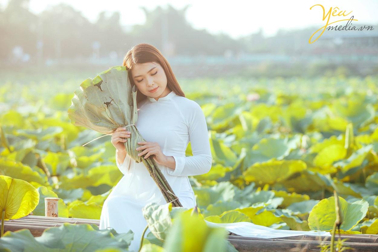 cô gái thùy mị nết na bên hoa sen hồ tây