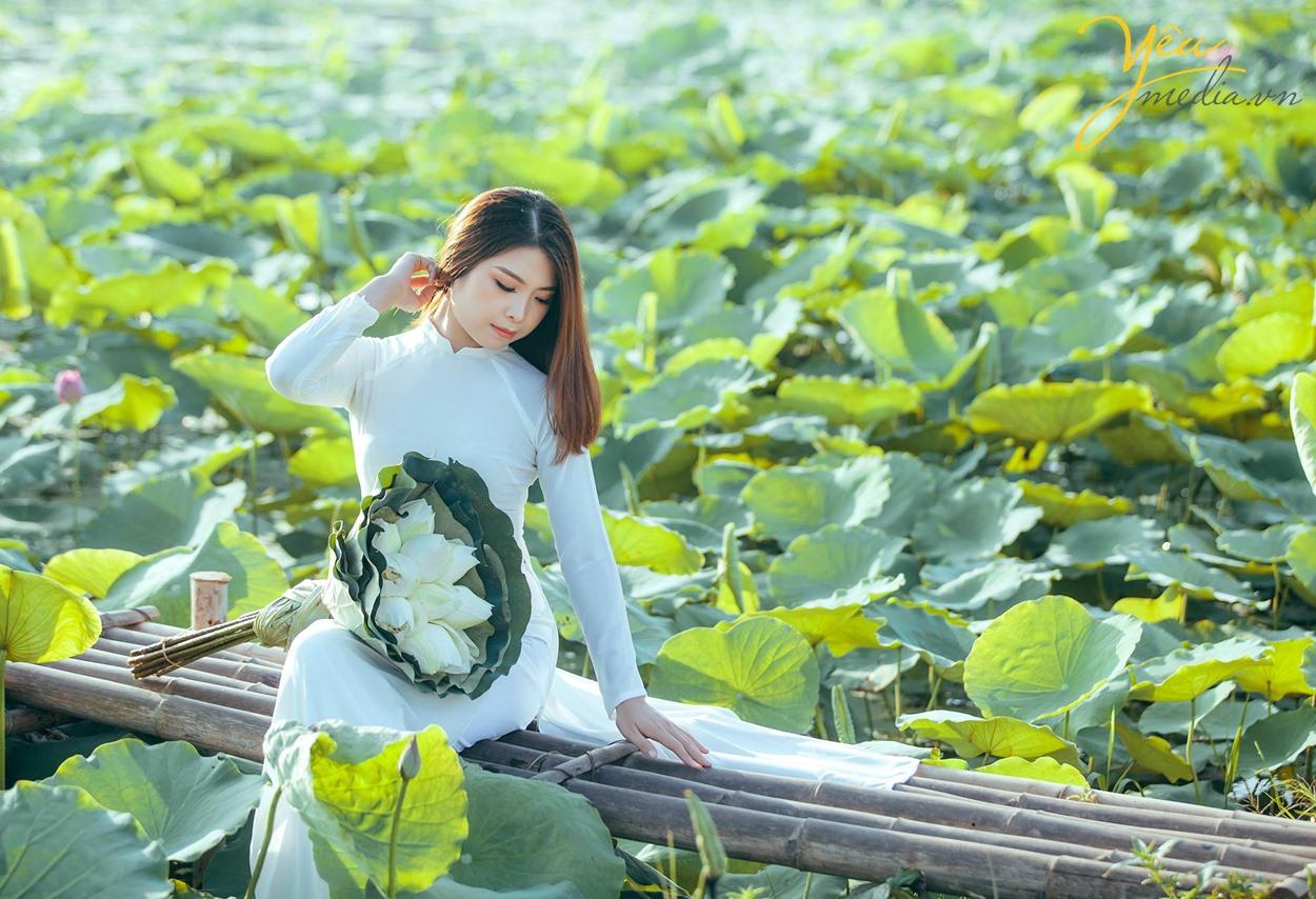 vẻ đẹp thiếu nữ bên hoa sen đầm sen hà nội