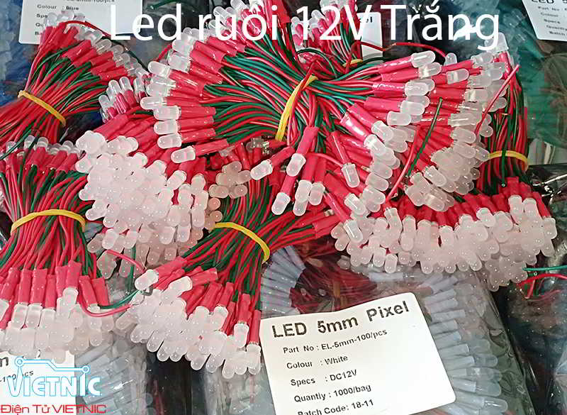 LED RUỒI 12V MÀU TRẮNG