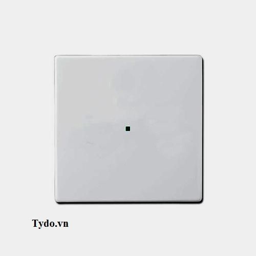 nắp nhựa đơn cho phím bấm - 2CKA006220A0139
